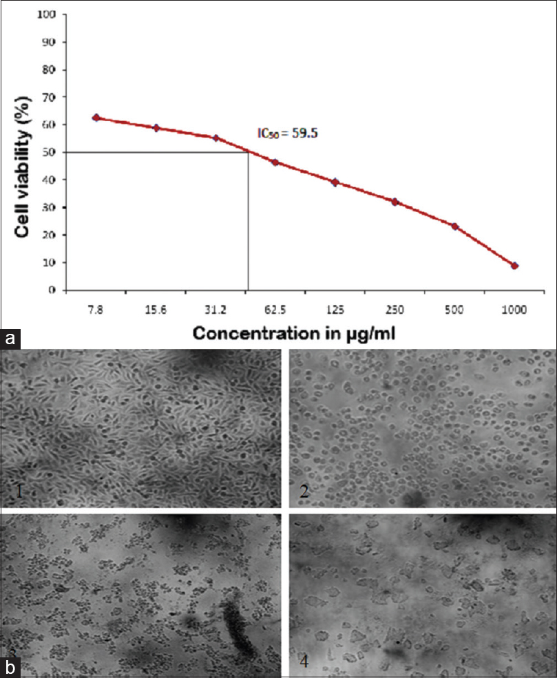 Imminent angiotensin-converting enzyme inhibitor from