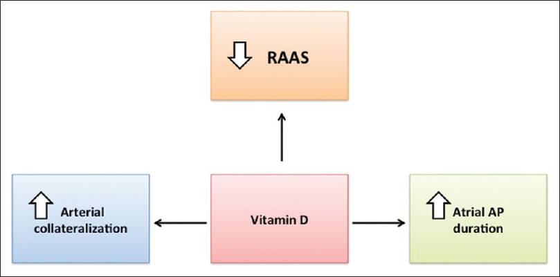 Dietary supplements and cardiovascular diseases